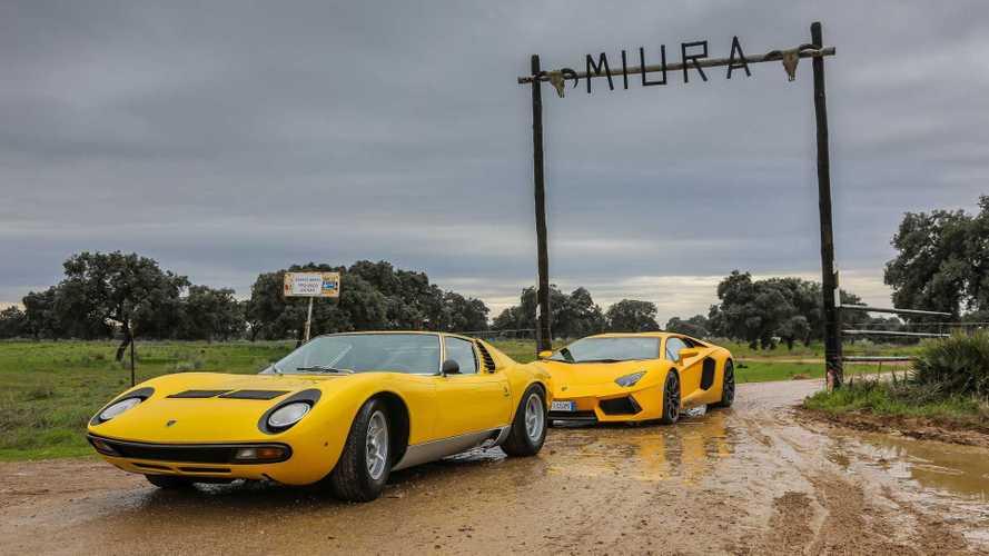 Estos son todos los deportivos de Lamborghini con nombres taurinos