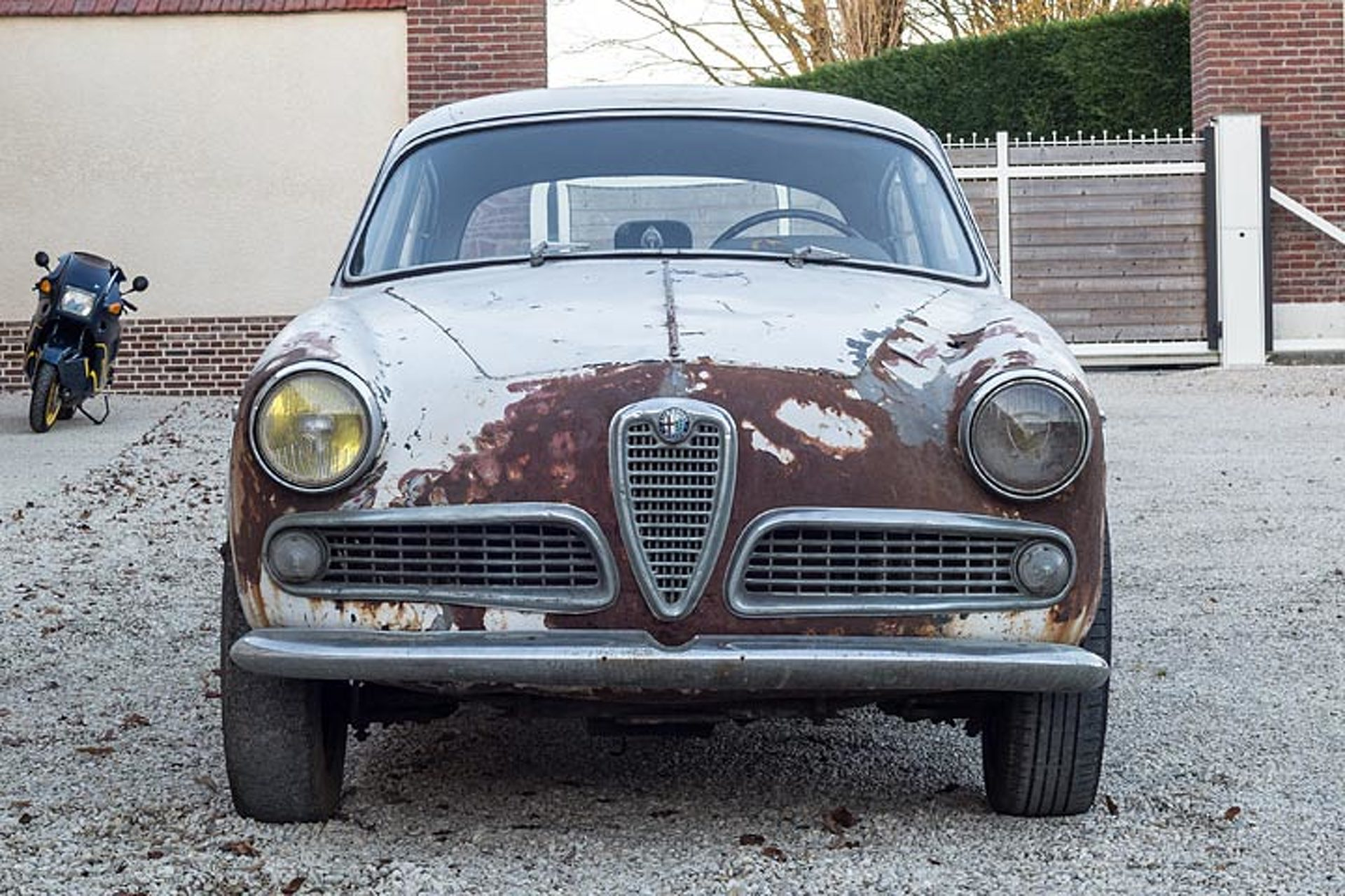 This Alfa Romeo Barn Find Is For Sale Rust Included - Old alfa romeo for sale