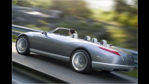 Concept: Renault Nepta