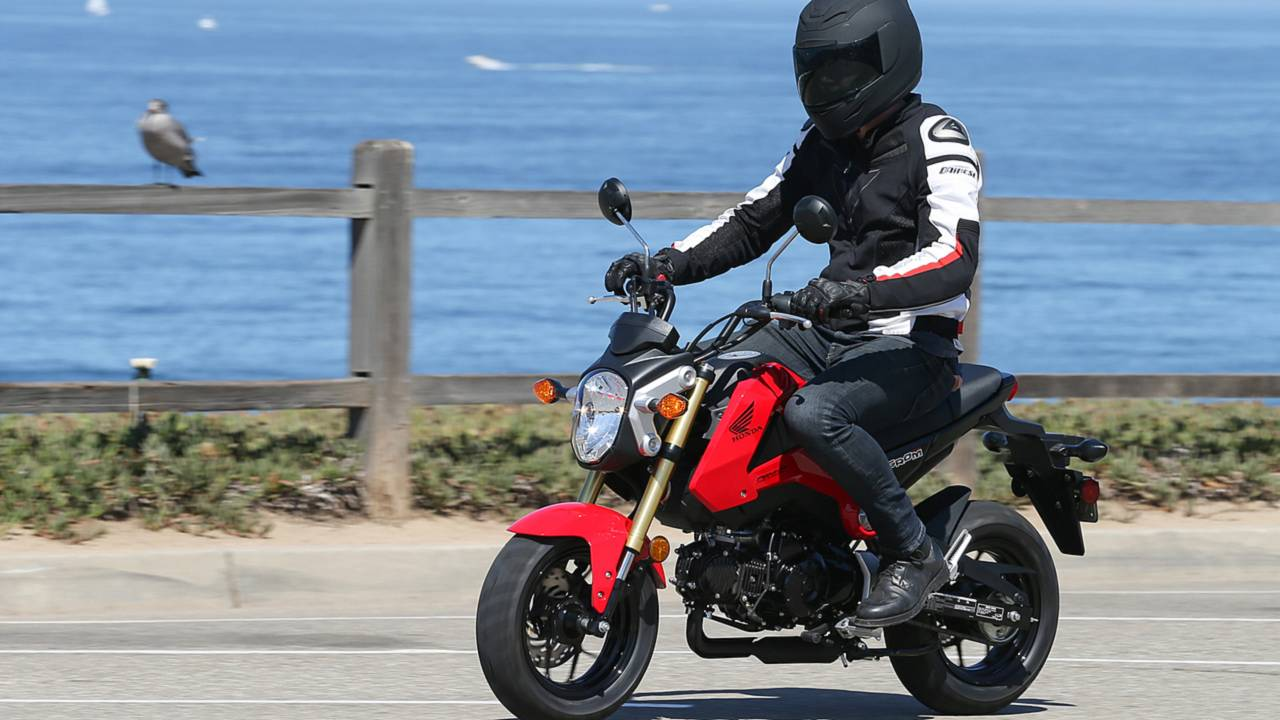 rideapart review  honda grom