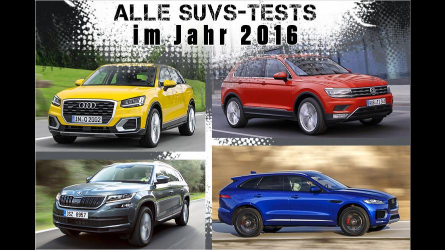 43 Autos in zwölf Monaten: Das waren unsere SUV-Tests in 2016