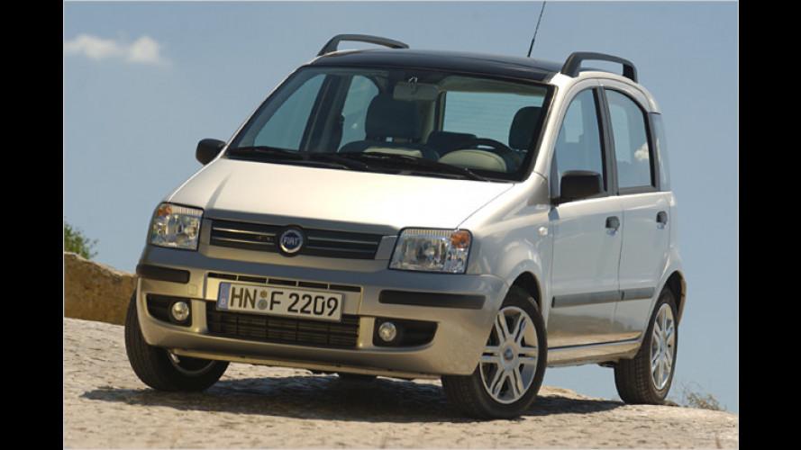 Fiat-Angebot: Brandneuer Panda schon für unter 5.000 Euro