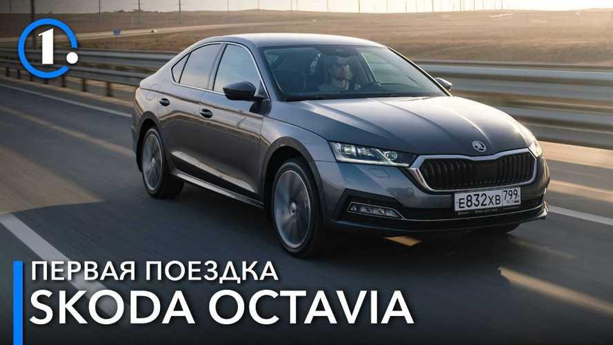 Кабань и Кубань: испытали лифтбэк Skoda Octavia нашими дорогами