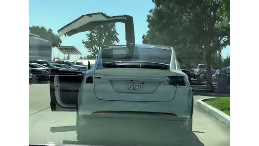 Tesla Model X Falcon Doors In Action - Video