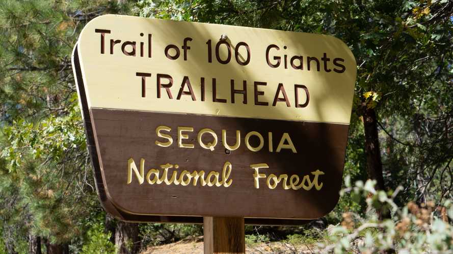 Sequoia National Forest: The Trail of a Hundred Giants