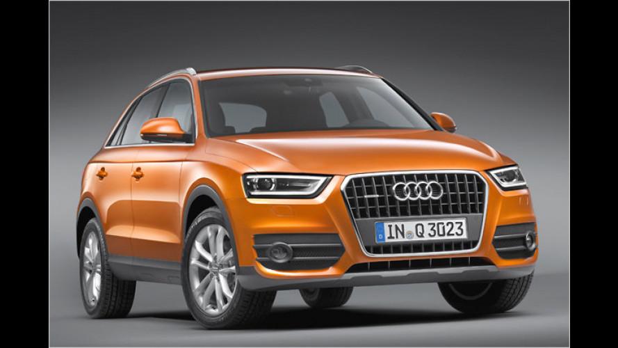 Audi Q3: Kompakte Konkurrenz