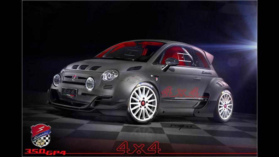 350 Allrad-PS im Fiat 500
