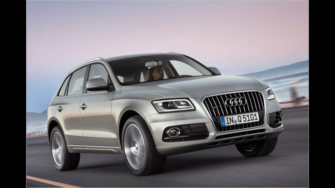 Audi Q5 2.0 TDI 110 kW clean diesel