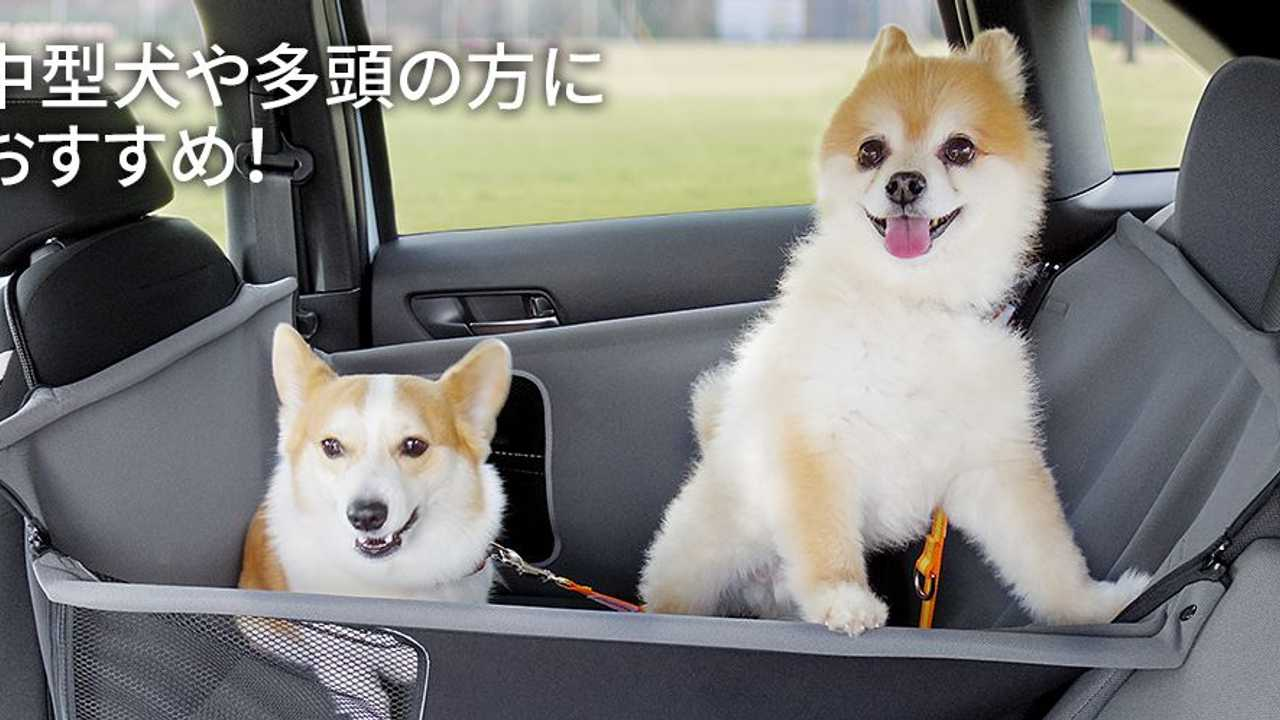 Honda Introduces Paw Accessories For Dog Lovers Of Japan