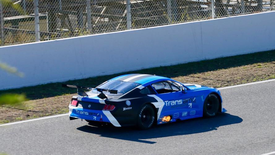 Transam Euro Racing