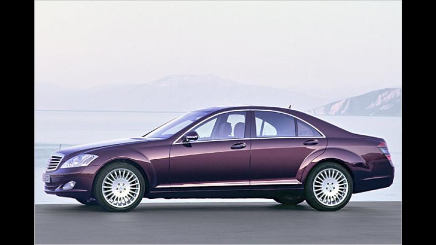 S kommt noch besser: Bilder und Fakten zum Big-Benz