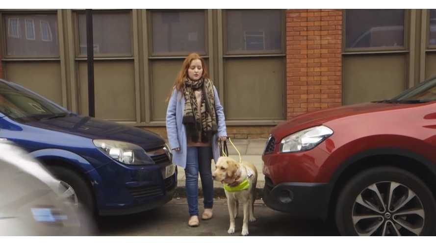 Guide Dogs - EVs