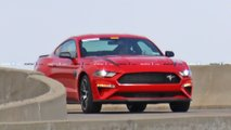 Mustang Entry Level Performance Model Spy Photos