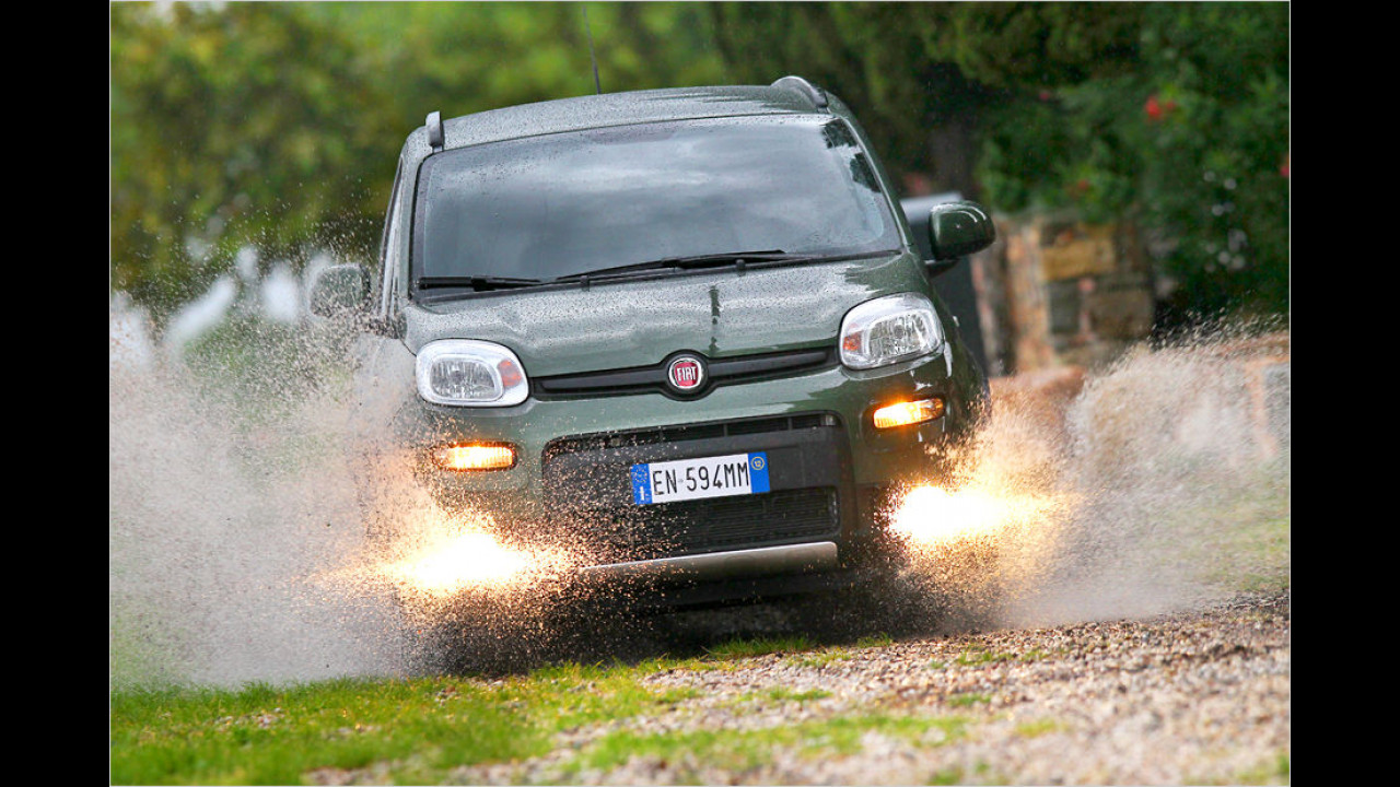Fiat Panda 0.9 8V Twinair Turbo 4x4: 16.690 Euro