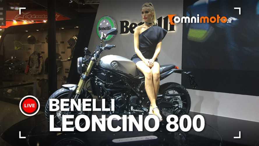 Benelli Leoncino 800, ruggito da oltre 80 cavalli