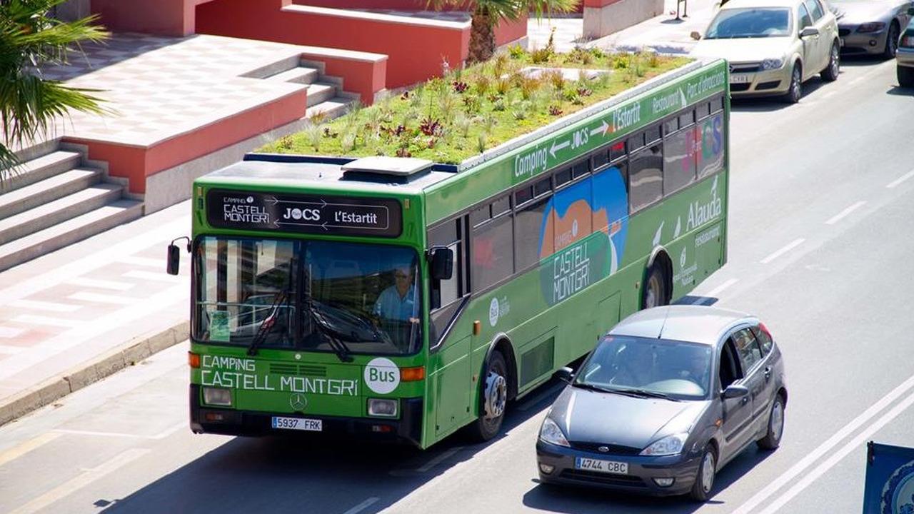 Bus Vert