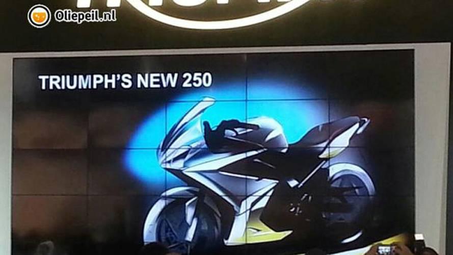 Leaked: 2015 Triumph Daytona 250