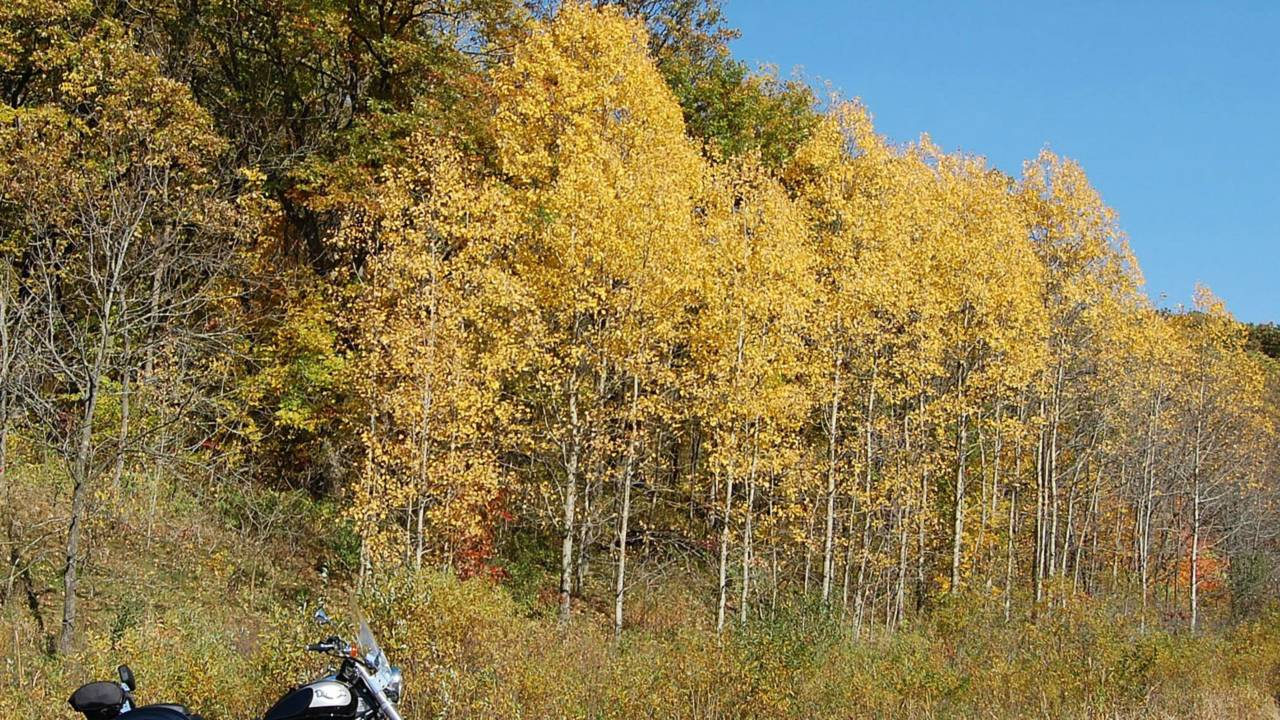 It's Fall - Time To Plan A Color Ride