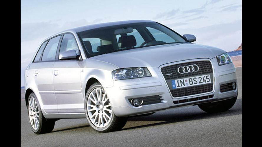 Audi: Dickes Ausstattungspaket zum quattro-Jubiläum