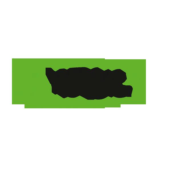Energica Motor Company