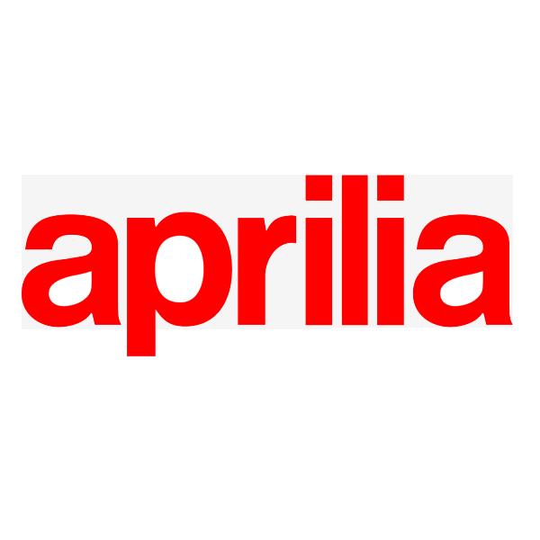 Aprilia Tuono V4 1100 R