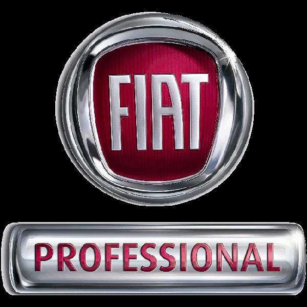2018 Fiat Professional Ducato Furgone Finestrato