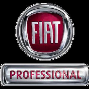 2020 Fiat Professional Ducato